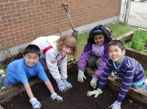 Launching Growing Up Organic at Cambridge Public School