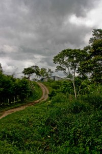 The road approaching Finca la Estrella.  We had to walk part of the distance as the van couldn't traverse the road.
